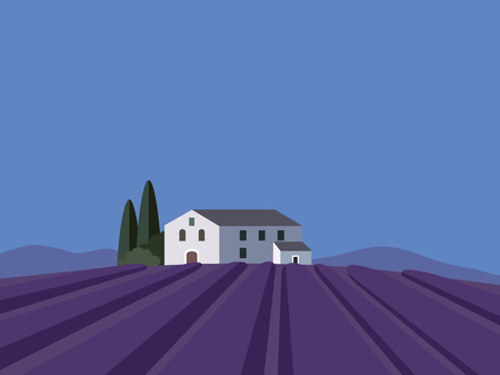 french countryside: Provence lavender field landscape with flat design vector illustration background Illustration