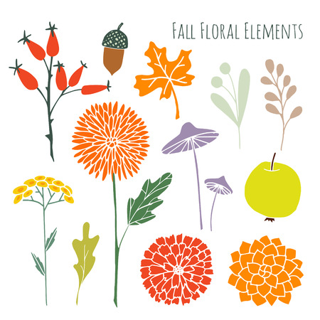 mumps: Set of hand drawn autumn fall floral graphic elements, isolated vector objects Illustration