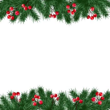 christmas card template: Christmas greeting card, invitation with fir tree branches and holly berries border on white background, isolated vector illustration