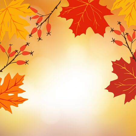 fall leaves background: Autumn, fall background. Greeting card with hand drawn maple leaves and rose hips.