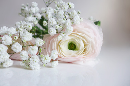Closeup of wedding bouquet made of Persian buttercups, Ranunculus and white babys breath Gypsophila flowers lying on the table.