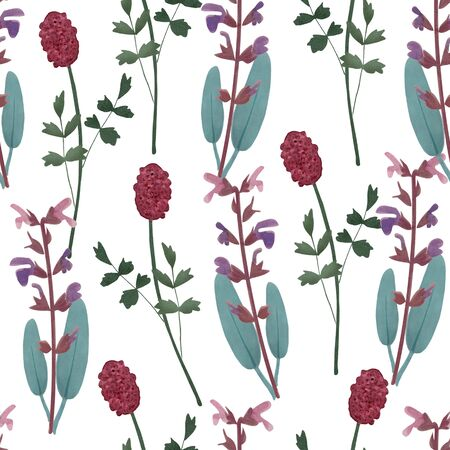 salvia: Cute floral seamless pattern with herbs. Sage, salvia officinalis and burnet, sanguisorba. Watercolor background with wild flowers. Stock Photo