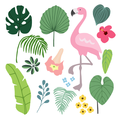 philodendron: Summer tropical graphic elements with flamingo bird. Jungle floral illustrations, palm and monstera leaves and hibiscus flower, flat design, isolated stock vectors.