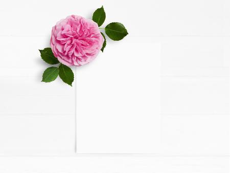 스타일 된 재고 사진입니다. 핑크 영어와 함께 여성 결혼식 데스크탑 mockup 꽃과 흰색 빈 종이 카드 장미. 오래 된 흰색 나무 배경에 꽃 조성입니다. 평