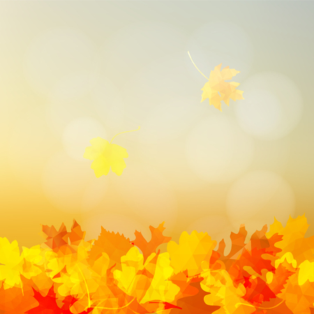 Bright autumn greeting card, invitation with colorful falling oak, elm and maple leaves, modern blurred background with bokeh lights. Vector illustration.