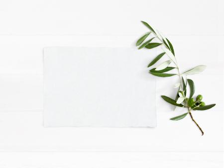 Gestyltes Foto auf Lager. Weibliche Hochzeit Desktop Mockup mit grünen Olivenzweig und weiße leere Papierkarte. Laubzusammensetzung auf altem weißem hölzernem Hintergrund. Ansicht von oben. Flaches Laienbild. Standard-Bild