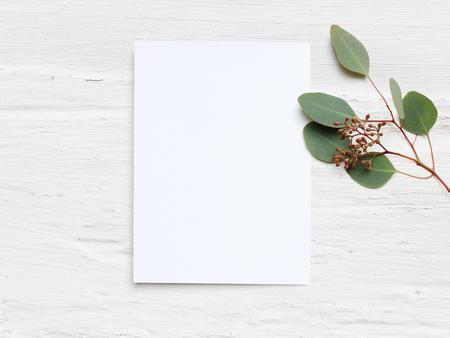 빈 종이 카드와 유칼립투스 populus 분기 초라한 표 배경에 여성 결혼식 데스크탑 모형. 빈 공간. Styled 스톡 사진, 웹 배너입니다. 평면 누워, 상위 뷰입니