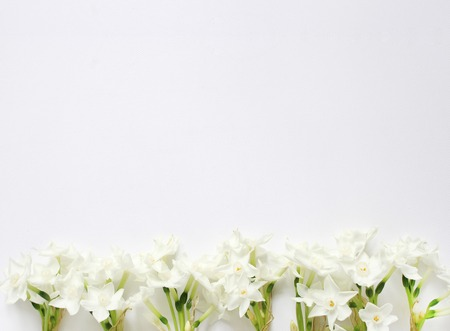 Styled stock photo. Spring, Easter feminine desktop scene with pink plate, narcissus, daffodils flowers and white table. Floral composition, web banner. Top view. Picture for blog or social media.