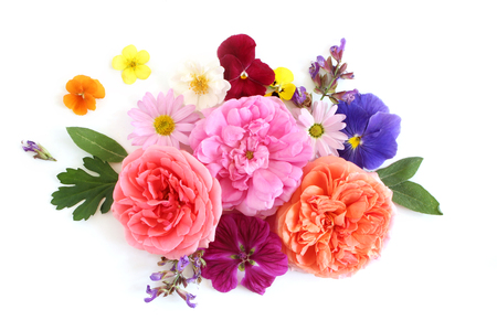 Feminine floral composition. Bouquet of edible wild and garden flowers and herbs. Old roses, sage, pansy, daisy, mallow and geranium blooms and leaves. Flat lay, top view.