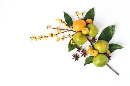 Christmas floral composition. Decorative corner, branch of tangerine citrus fruit and leaves, anise stars, yellow holly berries and little apples isolated on white table background. Flat lay, top view Stock Photo