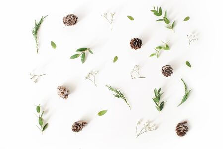 Christmas floral pattern. Winter composition of eucalyptus leaves and branches, larch cones and babys breath flowers on white table background. Flat lay, top view.
