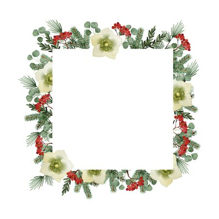 Christmas greeting card, invitation. Watercolor square frame, border. Pine tree and eucalyptus branches, hellebores flowers and rowan berries. Vintage winter floral composition. Stock Photo