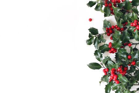 Christmas styled composition, decorative frame, banner. Holly tree green leaves, red berries and branches isolated on white table background. Flat lay, top view. Winter botanical pattern. Zdjęcie Seryjne