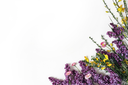 Styled stock photo. Spring botanical scene, floral composition. Decorative banner, corner made of purple lilac, yellow broom Cytisus and pink daisy flowers. White table background. Flat lay, top view.