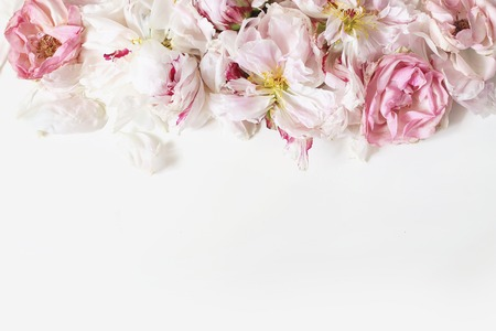 Close up of fading peonies and pink rose flowers petals isolated on white table background. Floral frame composition. Decorative web banner. Styled stock photo. Empty space, flat lay, top view. Stok Fotoğraf