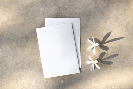 Blank greeting cards, invitations mockups with white Carissa flowers. Marble backgound with tree leaf shadow overlay. Modern template. Wedding stationery. Summer, vacation design. Flat lay, top view.