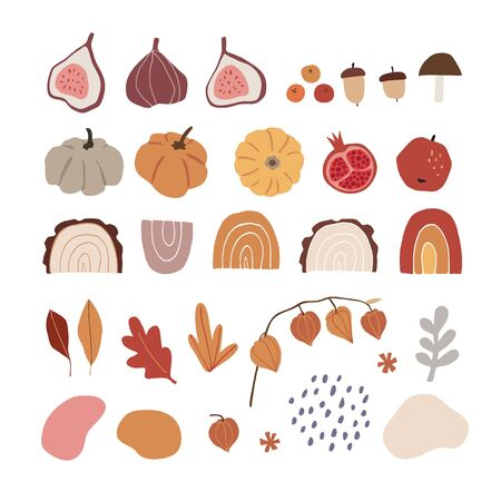 Set of modern abstract hand-drawn autumn elements. Apple, fig fruit, pumpkins, acorns, rainbows, physalis and geometric elements. Fall concept. Isolated natural flat vector illustrations, objects.