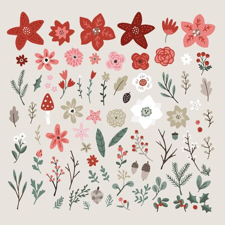 Christmas set of plants. Flowers, red poinsettia, eucalyptus, spruce, fir, branches, leaves and berries isolated on white background. Hand drawn design elements, winter floral vector illustrations.