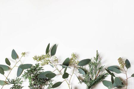 Kerst bloemen frame, webbanner. Rand van groene cipres, jeneverbes en berry eucalyptus boomtakken geïsoleerd op een witte tabelachtergrond. Winter natuurlijke decoratie. Botanische plat lag, bovenaanzicht. Stockfoto