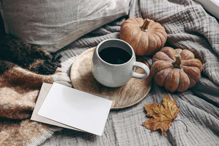 Fall feminine styled composition. Autumn breakfast still life. Blank greeting card mock-up scene with cup of coffee, wool blanket, maple leaf and pumpkins. Cotton table cloth background. Thanksgiving