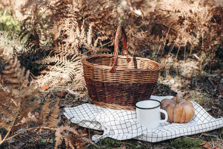 Wicker picnic basket on checkered blanket in sunny day. Enamel mug with orange pumpkin. Defocused autumn forest background with dry fern leaves. Fall outdoor meal, relaxation concept.