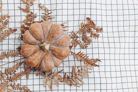 Closeup of orange pumpkin and dry fern leaves on white checkered blanket. Thanksgiving, Halloween design. Fall arrangement. Autumn concept, flat lay, top view. Empty copy space.