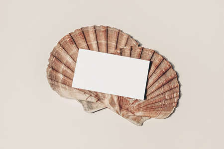 Modern summer stationery still life. Blank business card mock up scene with pink oyster sea shells. Beige table background. Flat lay, top view. Vacation, ocean concept.