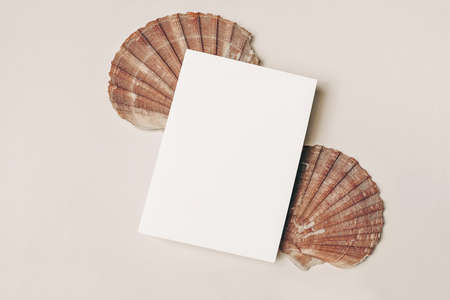 Modern summer stationery still life. Blank vertical greeting card, invitation mock up scene with pink oyster sea shells. Beige table background. Flat lay, top view. Vacation, ocean concept. Stock fotó