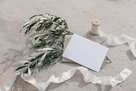 Summer wedding stationery mock-up scene. Blank greeting card, envelope, silk ribbon and olive branches and fruit in sunlight. Grunge concrete background with shadow. Feminine flat lay, top view.
