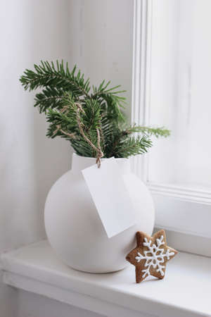 Christmas still life scene. Blank gift tag, label mockup. Green fir tree branches in white ceramic vase and gingerbread cookie star. Festive seasonal styled photo, scandinavian interior. Vertical closeup.