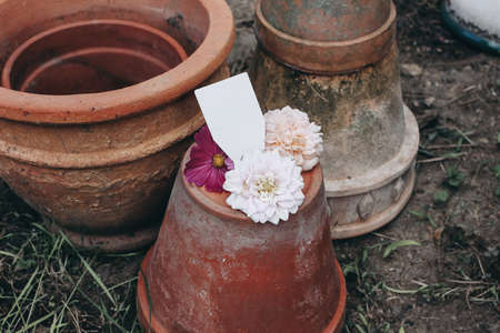 Collection of old empty clay flower pots. Blank tag, label mockup with dahlia, cosmos and rose flowers.Moody gardening lifestyle scene. Dirty and shabby ceramics composition. Stock fotó