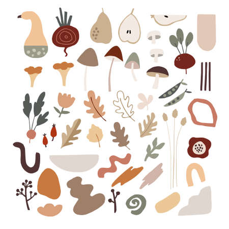Set of modern abstract hand-drawn autumn elements. Pumpkins, radish and beetroot vegetable. Pear fruit and mushrooms. Flowers and geometric objects. Fall concept. Isolated natural flat vectors Illusztráció