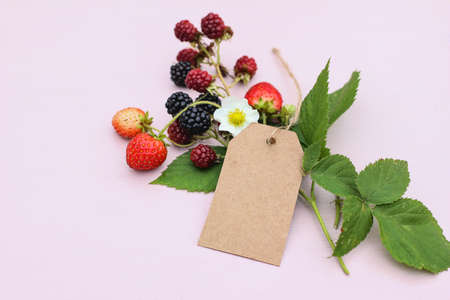 Summer floral and fruit still life composition. Closeup of blank gift tag, label mock-up scene. Blackberries,strawberries fruit , leaves and blossom. Pink table background. Seasonal sale concept.