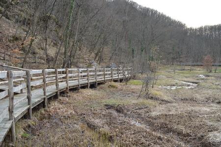 lonelyness: wooden bridge in winterlandscape
