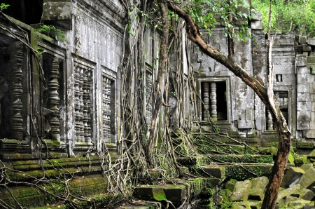 wat: Beng Mealea is a temple in the Angkor Wat style located 40 km east of the main group of temples at Angkor, Cambodia