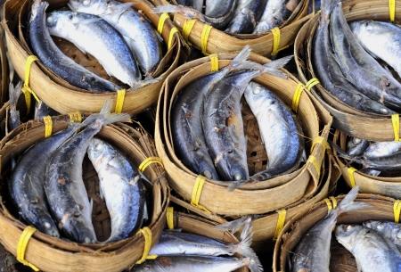 fresh mackerel fish  at market, Thailand Stock Photo - 16135211