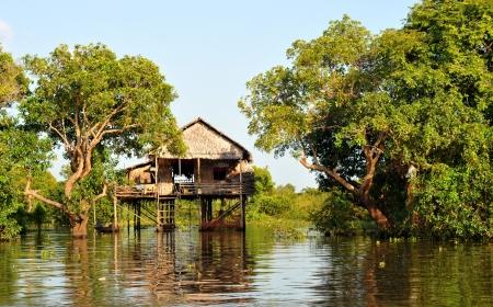 stilts: village house on stilts in cambodia