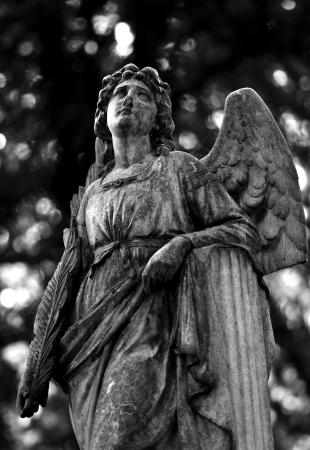 angel de la guarda: ?el custodio