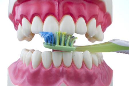 Dental mold biting and toothbrush