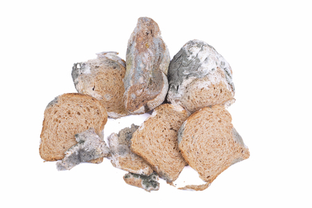 neatness: Mouldy bread isolated on a white background