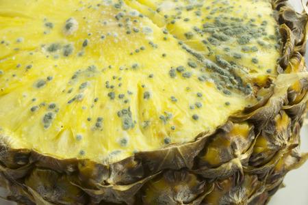 moldy: Moldy pineapple fruit,
