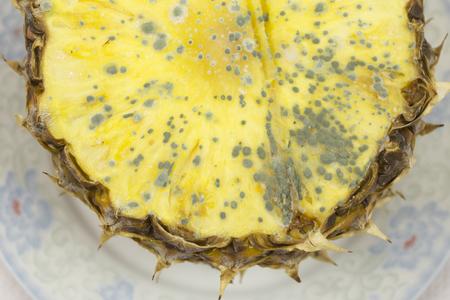 spoilage: Moldy pineapple fruit,