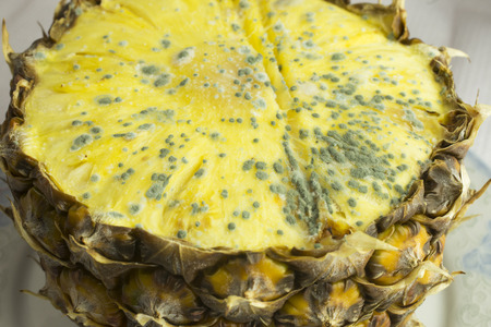 moldy: Moldy pineapple fruit,