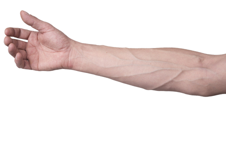 bloodstream: Male arm with veins