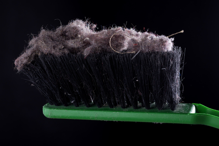 common house dust on a black background