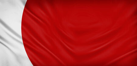 japan flagge: Japan flag texture background