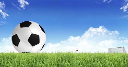sward: Soccer Sport Stock Photo