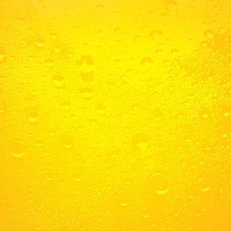 beer background: beer texture