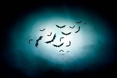 dark night: dark night sky