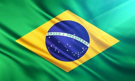 educaton: The National Flag of Brazil